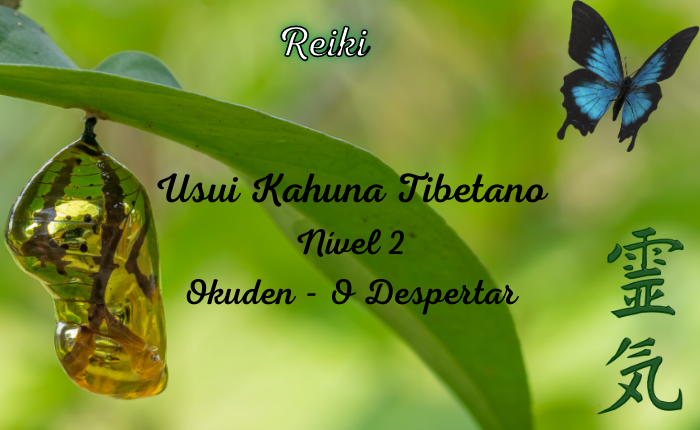 Reiki: Usui, Kahuna, Tibetano – Nível 2 Okuden